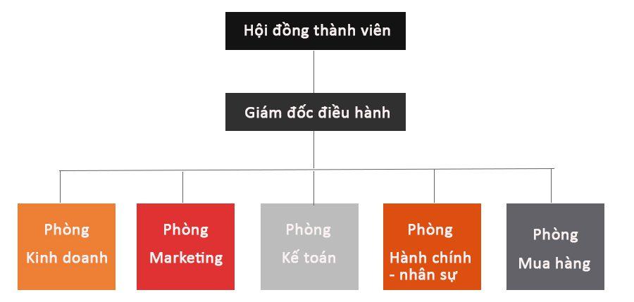 cơ cấu tổ chức 1 e1585217963428